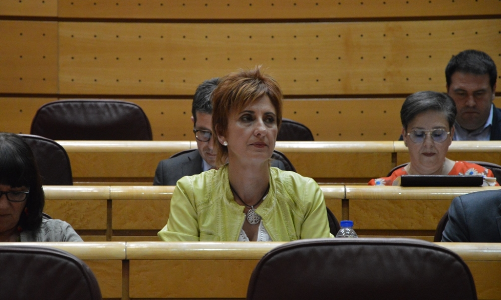 Galiano pide al PP que apoye los Presupuestos para 2019