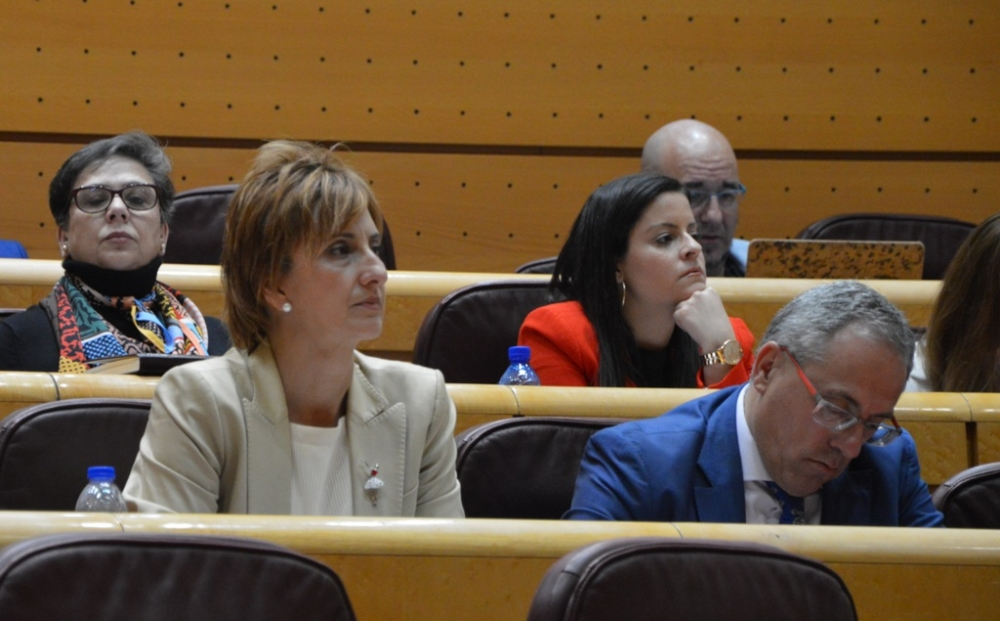 El PSOE reprocha a Montserrat que el Gobierno no dedica
