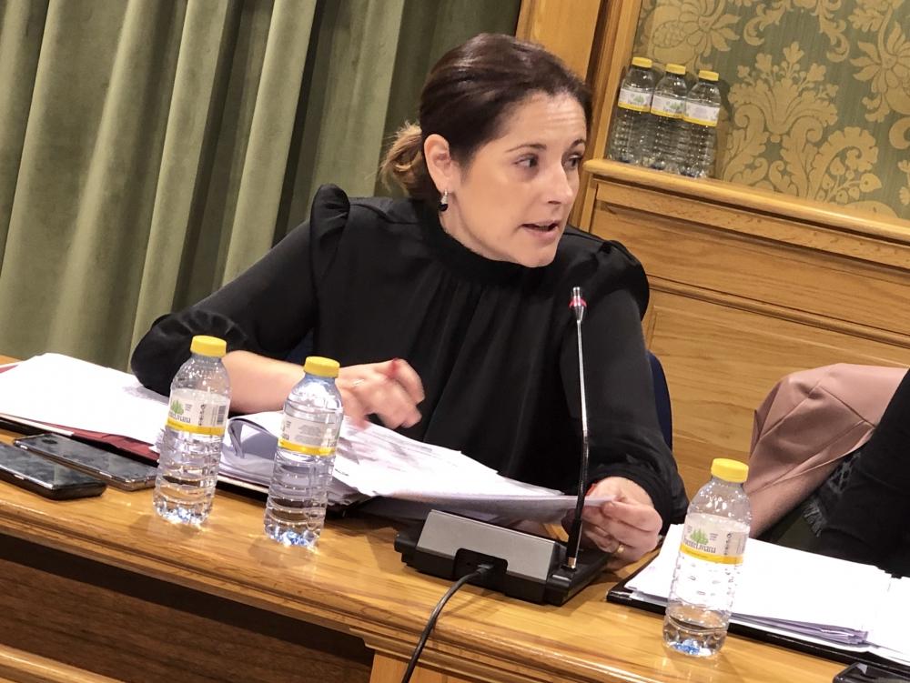 El Grupo Socialista aclara que el Pleno extraordinario del martes tendr� el formato acordado con los grupos pol�ticos