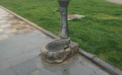 El GMS lamenta que los parques y jardines de la ciudad están