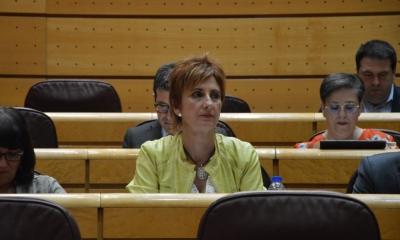 Galiano pide al PP que apoye los Presupuestos para 2019 por responsabilidad